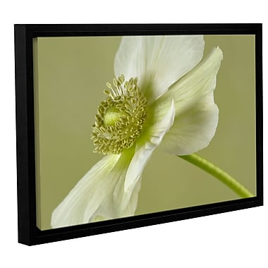 ArtWall 'Anemone' by Cora Niele Framed Photographic Print on Wrapped Canvas; 16'' H x 24'' W