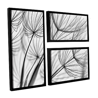 ArtWall 'Parachute Seed II' by Cora Niele 3 Piece Framed Graphic Art on Wrapped Canvas Set