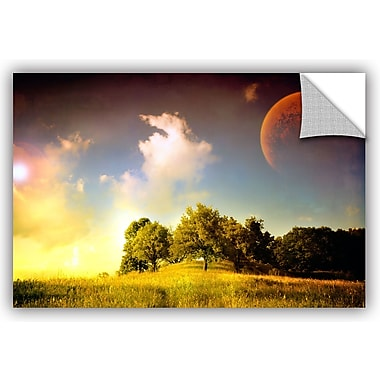 ArtWall 'Everlasting Season' by Dragos Dumitrascu Photographic Print; 32'' H x 48'' W x 0.1'' D