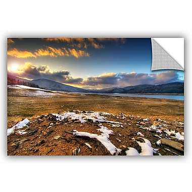 ArtWall 'The Winter Sun' by Dragos Dumitrascu Photographic Print; 16'' H x 24'' W x 0.1'' D