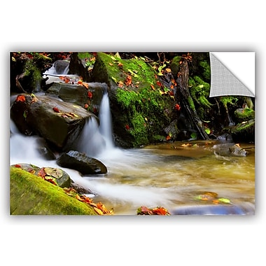ArtWall 'Timeless Forest' by Dragos Dumitrascu Photographic Print; 24'' H x 36'' W x 0.1'' D