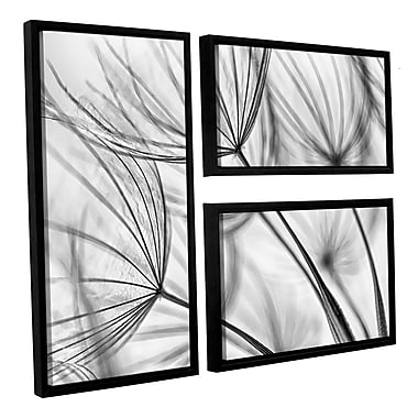 ArtWall 'Parachute Seed I' by Cora Niele 3 Piece Framed Photographic Print on Canvas Set