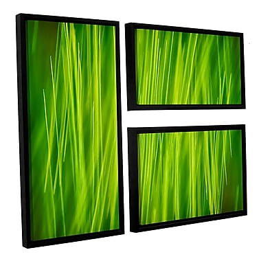 ArtWall 'Hordeum' by Cora Niele 3 Piece Framed Graphic Art on Canvas Set