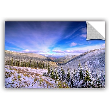 ArtWall 'Winter Lands II' by Dragos Dumitrascu Photographic Print; 12'' H x 18'' W x 0.1'' D