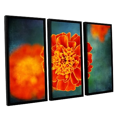 ArtWall 'One In Orange' by Dragos Dumitrascu 3 Piece Framed Photographic Print on Canvas Set