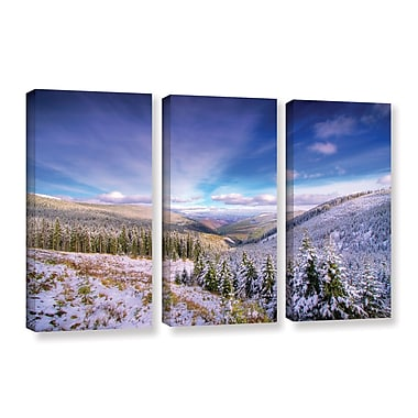 ArtWall 'Winter Lands II' by Dragos Dumitrascu 3 Piece Photographic Print on Wrapped Canvas Set
