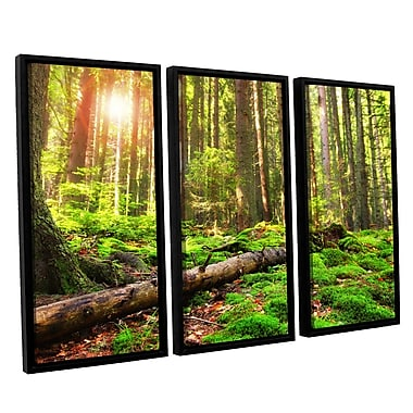 ArtWall 'Back to Green' by Dragos Dumitrascu 3 Piece Framed Photographic Print on Canvas Set
