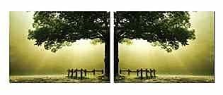 Artistic Bliss Green Tree 2 Piece Photographic Print Set