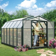 Rion Hobby Gardener 2 Twin Wall 8 Ft. W x 12 Ft. D Greenhouse