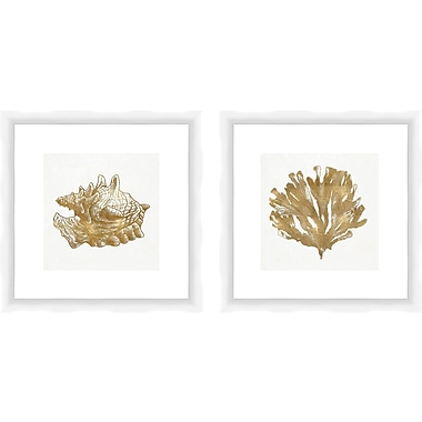 PTM Images Golden Elements of the Sea Gicl es 2 Piece Framed Graphic Art Set