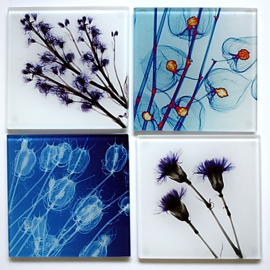 Radiant Art Studios X-ray Designs 4 Piece Floral Frosted Glass Coasters Set