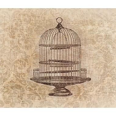PTM Images Birdcage Graphic Art on Wrapped Canvas