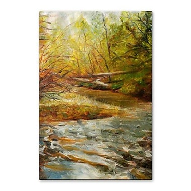 All My Walls 'Stoner Creek' by James Corwin Painting Print Plaque