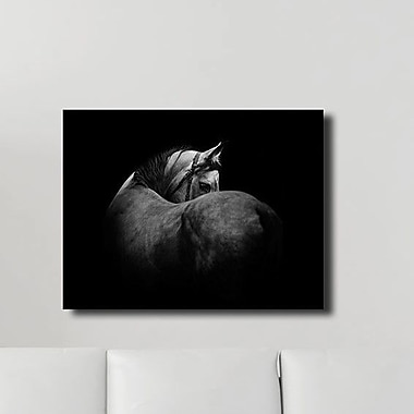 PTM Images Hanover Wrapped Photographic Print on Canvas