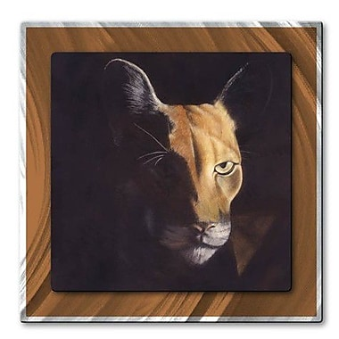 All My Walls 'Vigilance' by Patricia Ackor Painting Print Plaque
