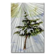All My Walls 'Snowytree' by Stephanie Kriza Painting Print Plaque