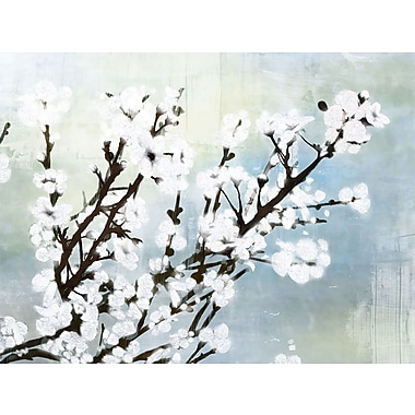 PTM Images Cherry Blossom II Frame Painting Print on Wrapped Canvas