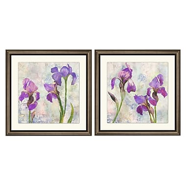 PTM Images Iris Watercolor 2 Piece Gicl e Framed Painting Print Set