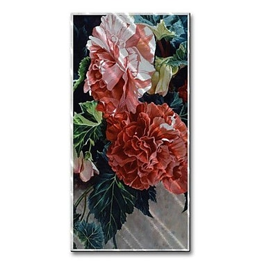 All My Walls 'Coral Begonias' by M J Studios Graphic Art Plaque