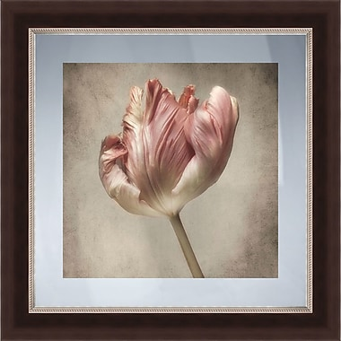 PTM Images Pink Floral III Gicl e Framed Graphic Art