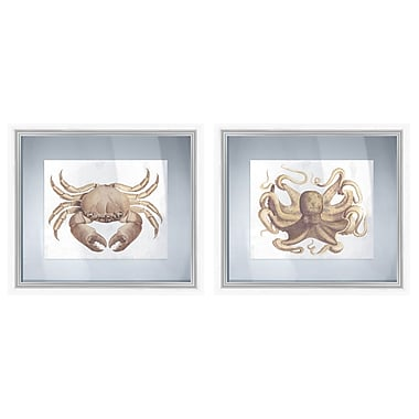 PTM Images Sepia Sea Life Gicl e Floating between Glass 2 Piece Framed Graphic Art Set