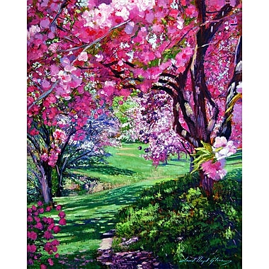 PTM Images Floral Pathway Painting Print on Wrapped Canvas