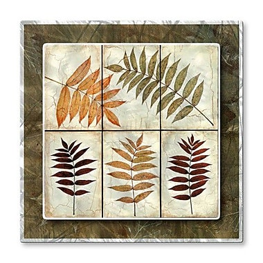 All My Walls 'Leaf Study Tile 2' by Tina Chaden Painting Print Plaque