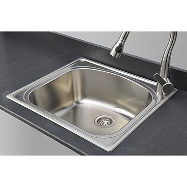 WELLS SINKWARE Chicago Series 25'' x 22'' D-shaped Topmount Kitchen Sink