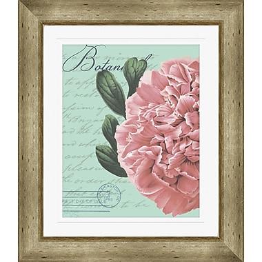 PTM Images Botanical Flower Framed Graphic Art