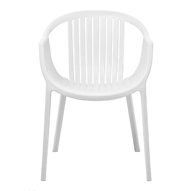 Gold Sparrow Rowan Arm Chair (Set of 2); White