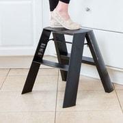 Lucano 2-Step Aluminum Wide Step Stool w/ 300 lb. Load Capacity; Black