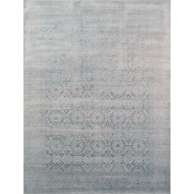 Pasargad Transitional Hand-Knotted Area Rug