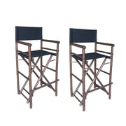 ZEW High Director Folding Patio Dining Chair (Set of 2); Black