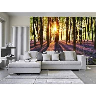 WallPops! Ideal Decor Woodland at Dawn Wallpaper 12' x 100'' Wall Mural