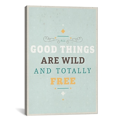 iCanvas American Flat Wildly Free Textual Art on Wrapped Canvas; 40'' H x 26'' W x 0.75'' D