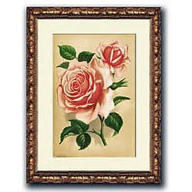 HadleyHouseCo Rose La France Framed Painting Print