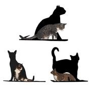 The Refined Feline Silhouette Cat Perch (Set of 3); Black