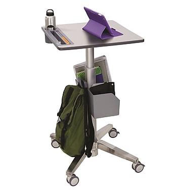 Ergotron® 24-481-003 LearnFit™, Adjustable Standing Desk, Clear Anodized