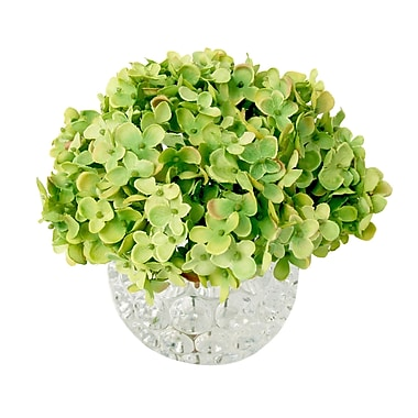 Creative Displays, Inc. Hydrangea Thousand Eye Water Bowl; Green