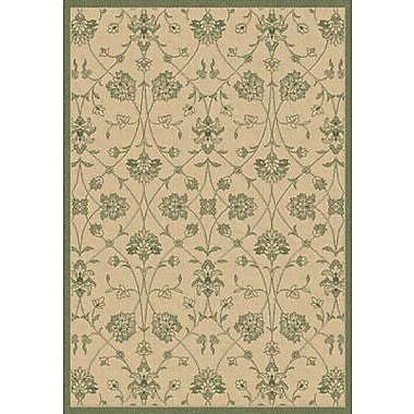 Dynamic Rugs Piazza Natural/Green Indoor/Outdoor Rug; Rectangle 3'11'' x 5'7''
