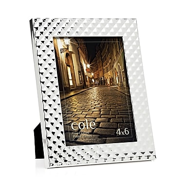 Philip Whitney Spike Picture Frame