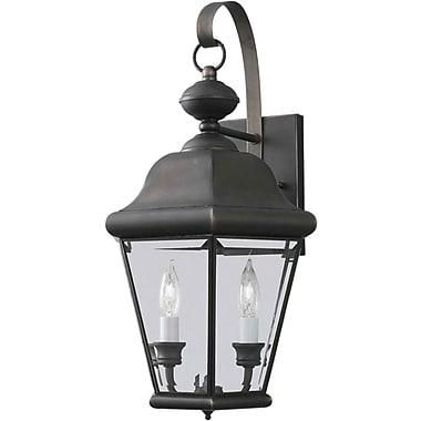 Forte Lighting 2-Light Outdoor Wall Lantern; 10.5'' H x 19'' W x 10'' D