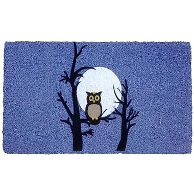 Imports Decor Night Owl Doormat