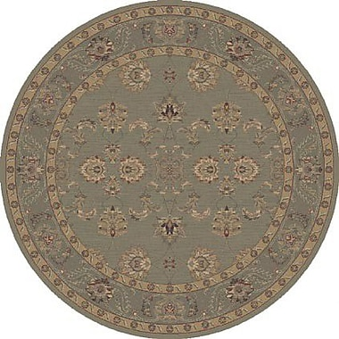 Dynamic Rugs Satin Maylot Moss Rug; Round 5'3''