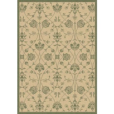 Dynamic Rugs Piazza Natural/Green Indoor/Outdoor Rug; Rectangle 6'7'' x 9'6''