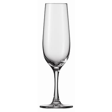 Schott Zwiesel Tritan Congresso 8 Oz Champagne Glass (Set of 6)