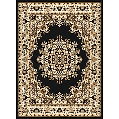 United Weavers of America Dallas Floral Kirman Black Area Rug; 7'10'' x 10'6''
