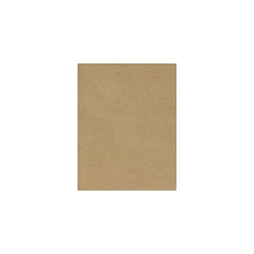 LUX 13 x 19 Cardstock 500/Box, 18pt. Grocery Bag (1319-C-18GB-500)