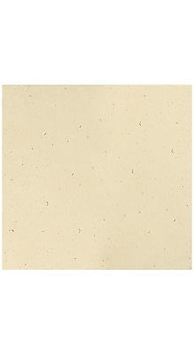LUX 12 x 12 Cardstock 250/Box, Stone (1212-C-83-250)