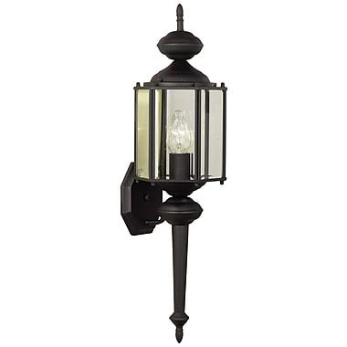 Thomas Lighting Brentwood 1-Light Outdoor Sconce; Black